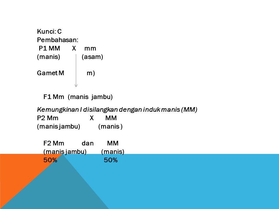 Kunci: C Pembahasan: P1 MM X mm (manis) (asam)