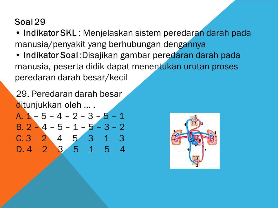 Soal 29 • Indikator SKL : Menjelaskan sistem peredaran darah pada manusia/penyakit yang berhubungan dengannya.