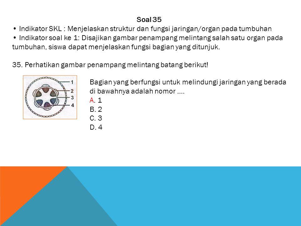 Soal 35 • Indikator SKL : Menjelaskan struktur dan fungsi jaringan/organ pada tumbuhan.