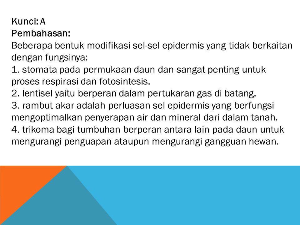 Kunci: A Pembahasan: Beberapa bentuk modifikasi sel-sel epidermis yang tidak berkaitan dengan fungsinya:
