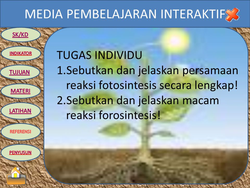TUGAS INDIVIDU Sebutkan dan jelaskan persamaan reaksi fotosintesis secara lengkap.
