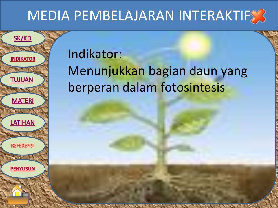 Indikator: Menunjukkan bagian daun yang berperan dalam fotosintesis