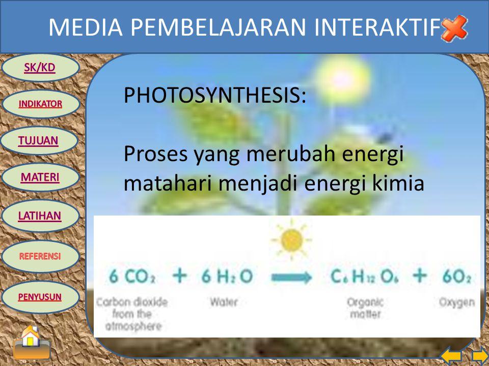 PHOTOSYNTHESIS: Proses yang merubah energi matahari menjadi energi kimia