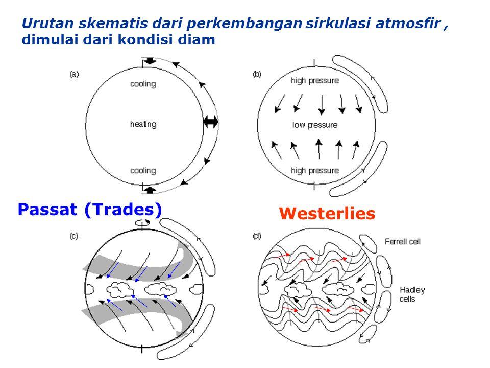 Passat (Trades) Westerlies Westerlies