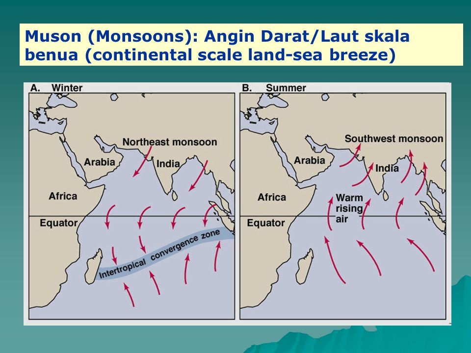 Muson (Monsoons): Angin Darat/Laut skala benua (continental scale land-sea breeze)