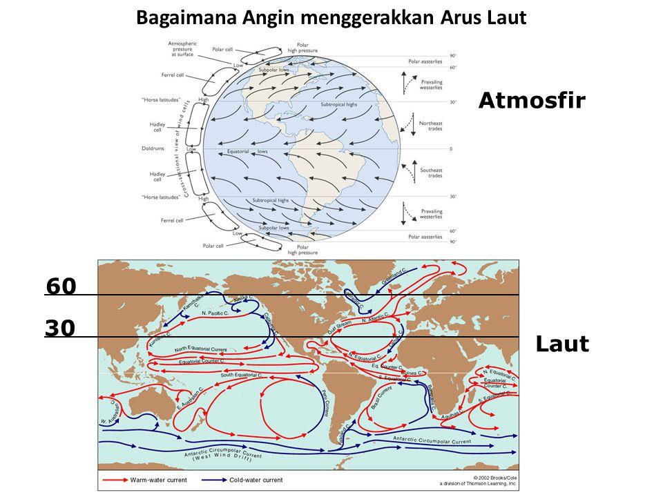 Bagaimana Angin menggerakkan Arus Laut