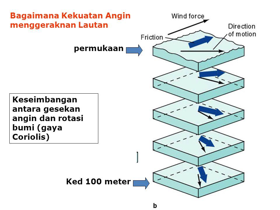 Bagaimana Kekuatan Angin menggeraknan Lautan
