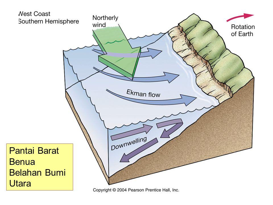 Pantai Barat Benua Belahan Bumi Utara