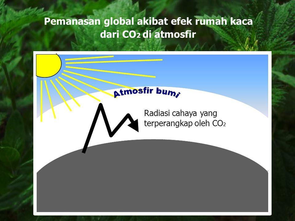 Pemanasan global akibat efek rumah kaca dari CO2 di atmosfir
