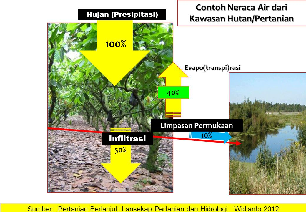 Contoh Neraca Air dari Kawasan Hutan/Pertanian