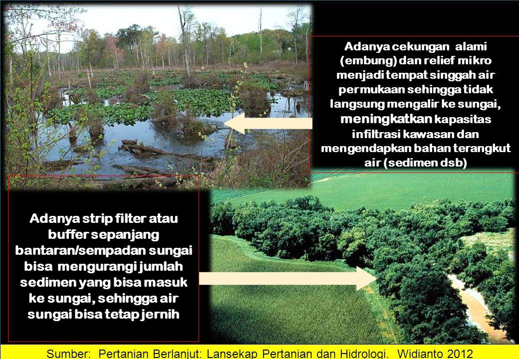 Adanya cekungan alami (embung) dan relief mikro menjadi tempat singgah air permukaan sehingga tidak langsung mengalir ke sungai, meningkatkan kapasitas infiltrasi kawasan dan mengendapkan bahan terangkut air (sedimen dsb)