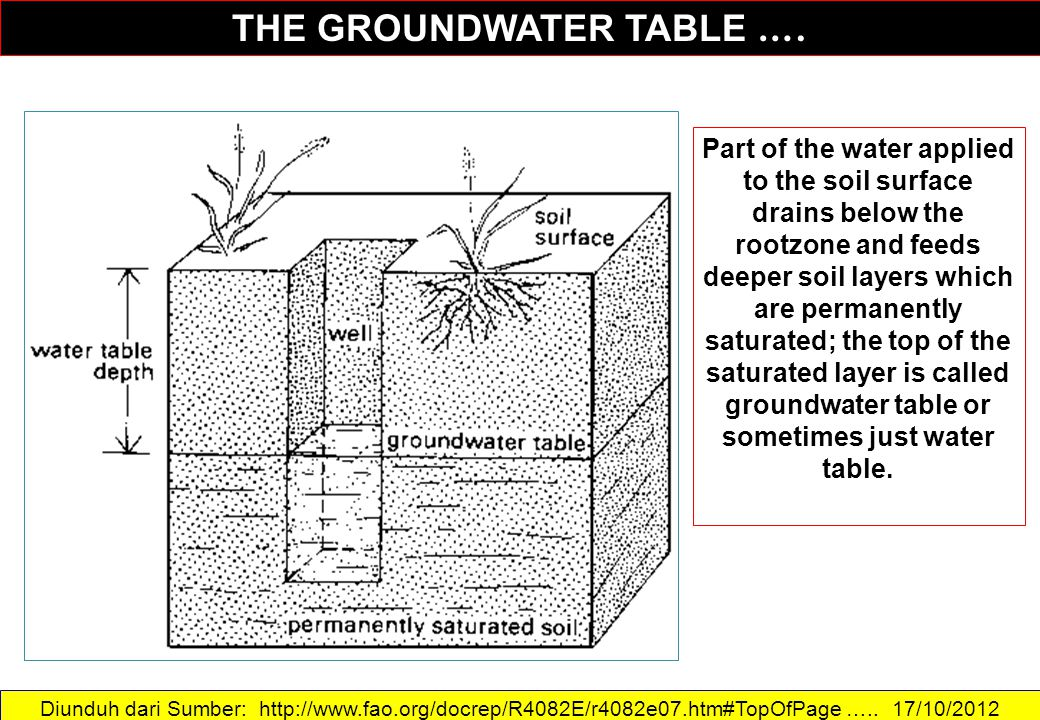 THE GROUNDWATER TABLE ….