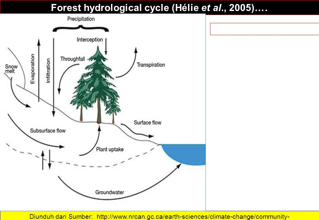 Forest hydrological cycle (Hélie et al., 2005)….