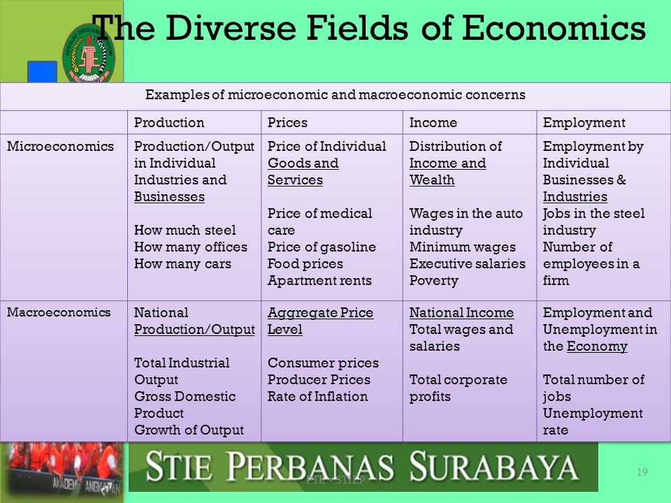 The Diverse Fields of Economics