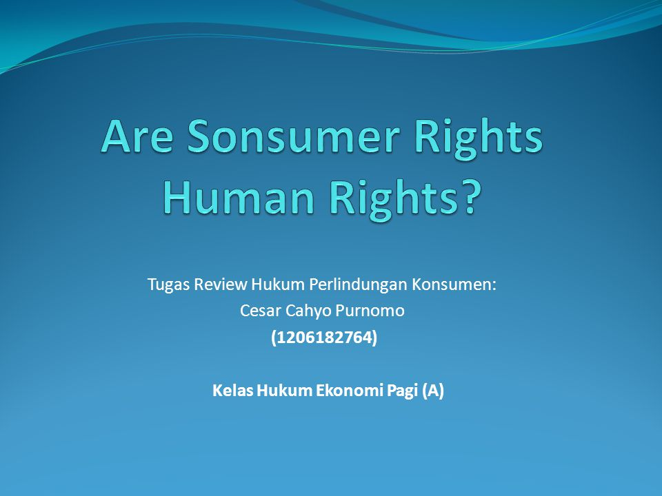 Are Sonsumer Rights Human Rights