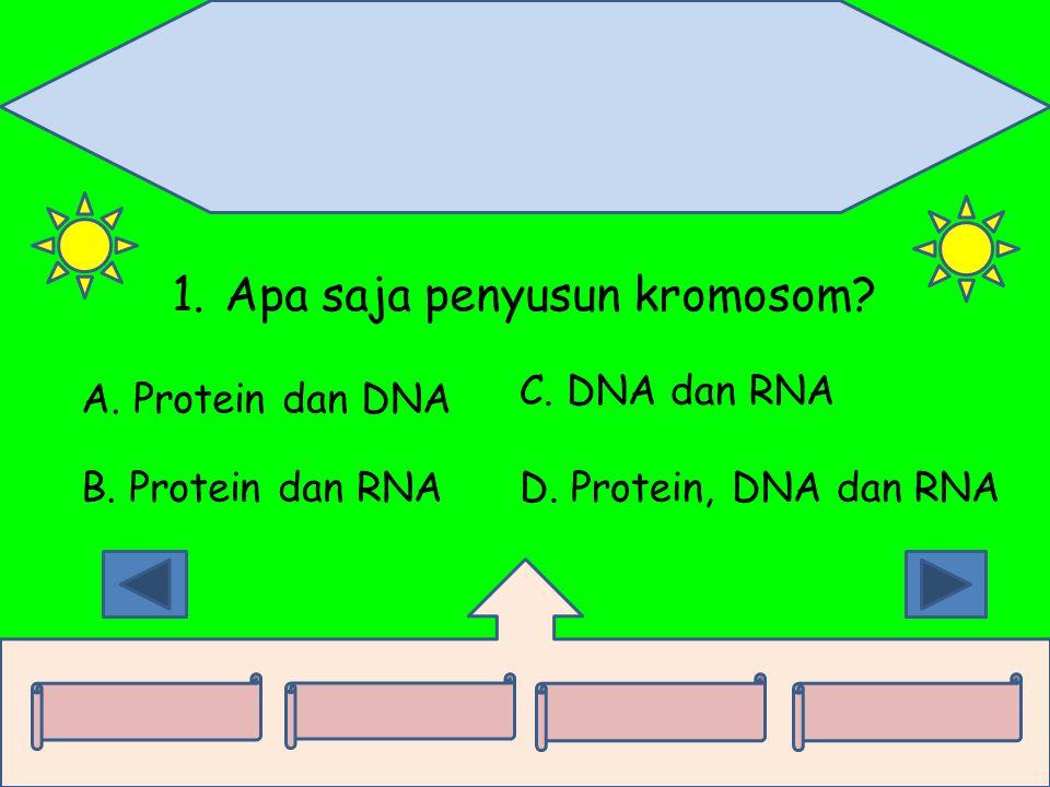 Apa saja penyusun kromosom