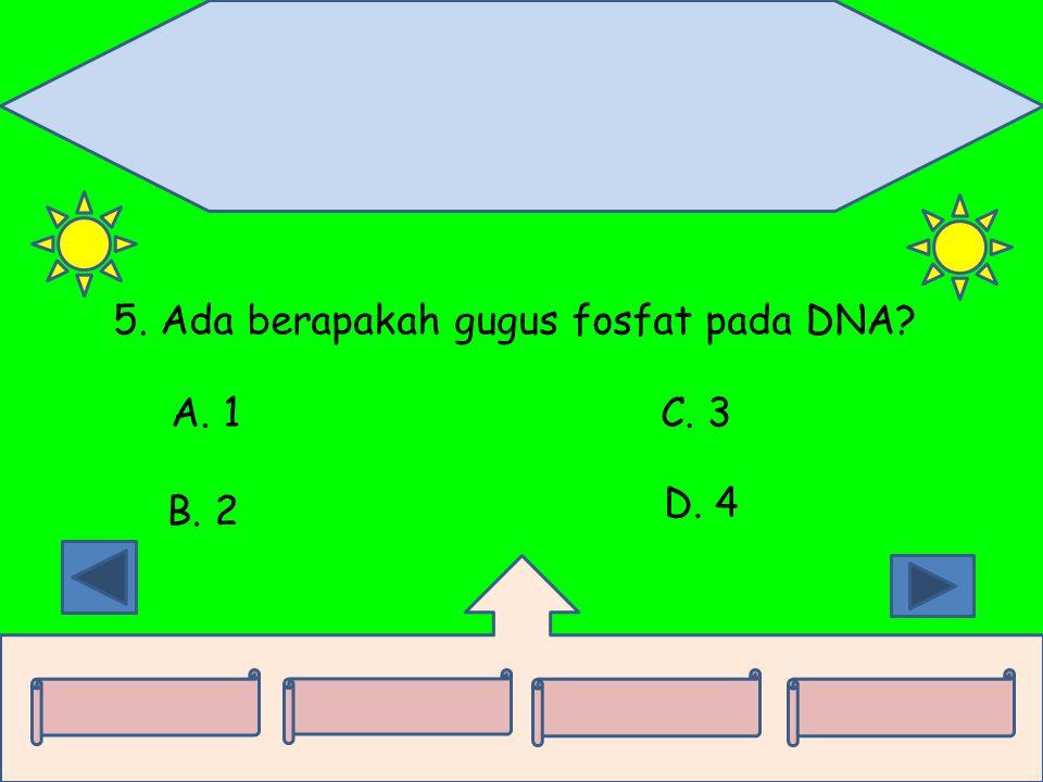 5. Ada berapakah gugus fosfat pada DNA