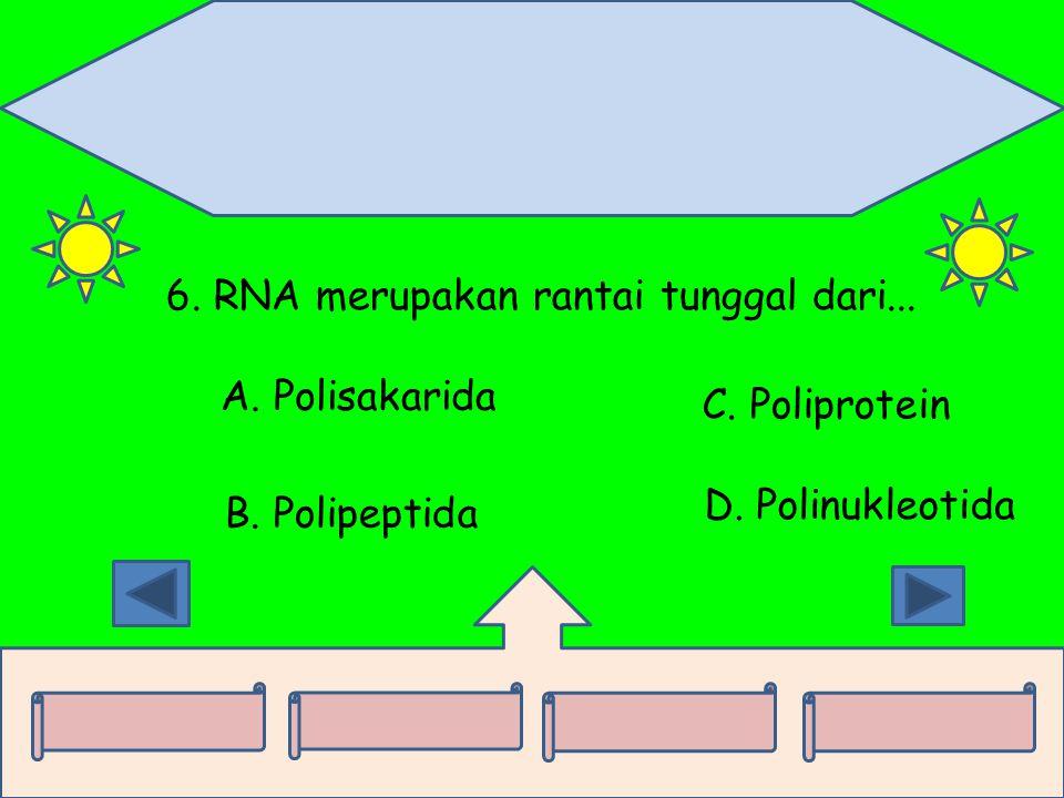 6. RNA merupakan rantai tunggal dari...