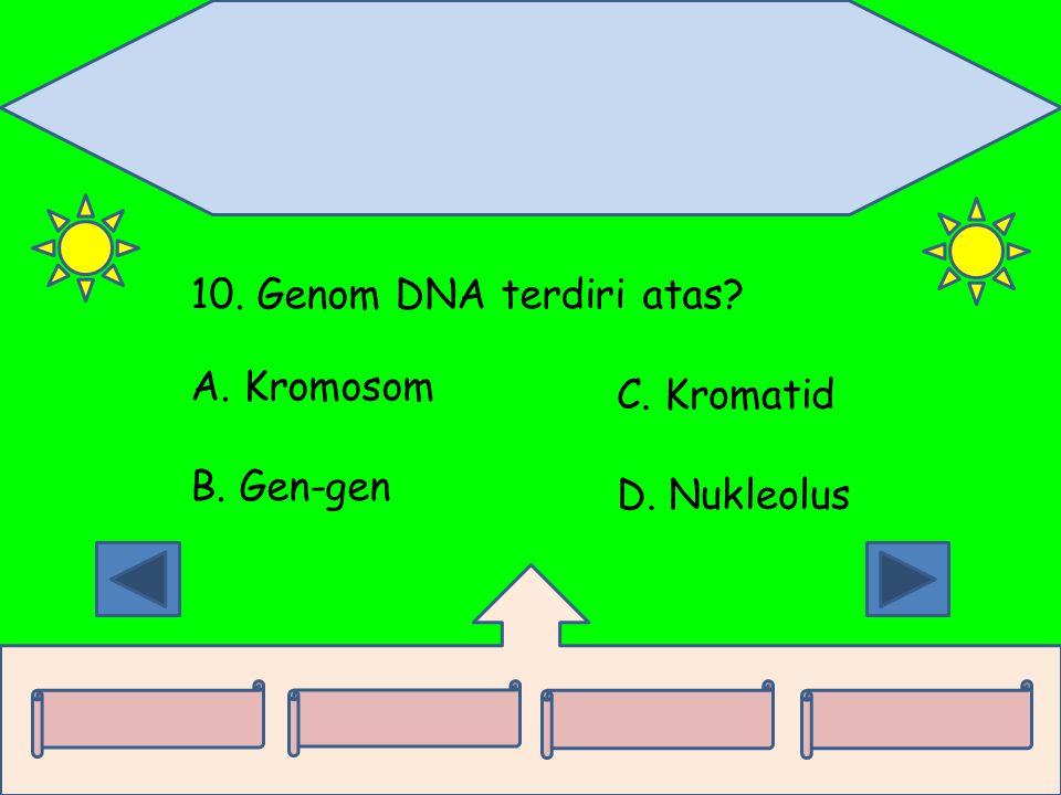 10. Genom DNA terdiri atas A. Kromosom C. Kromatid B. Gen-gen D. Nukleolus