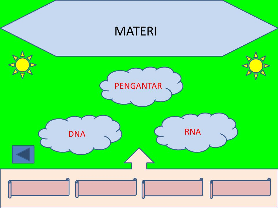MATERI PENGANTAR RNA DNA