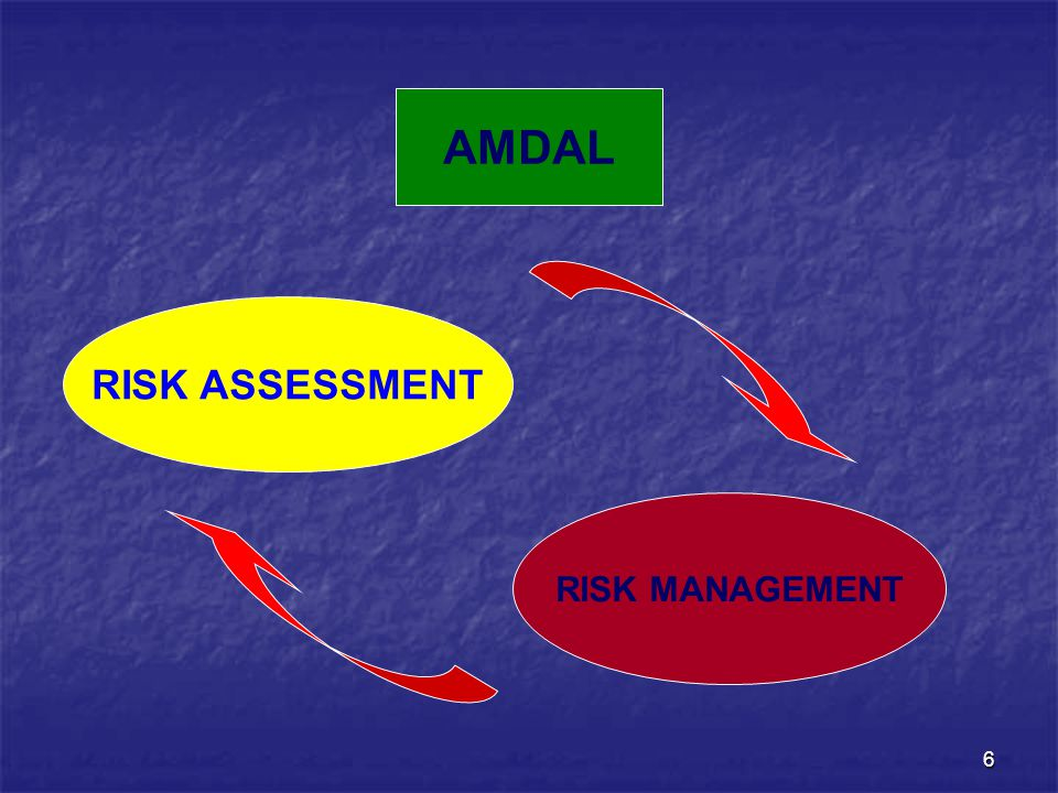 AMDAL RISK ASSESSMENT RISK MANAGEMENT