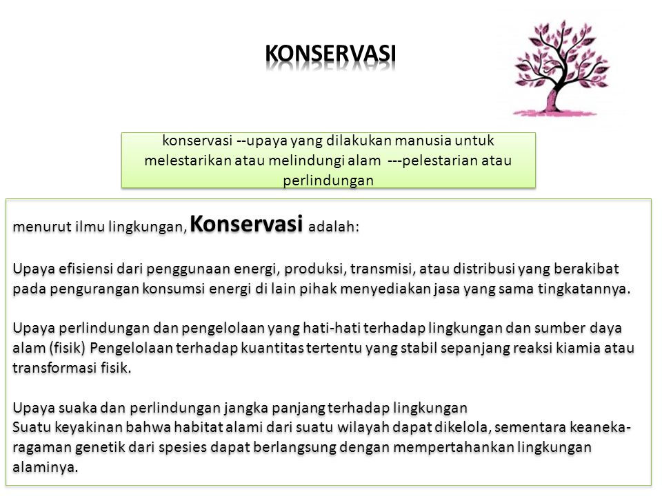 KONSERVASI konservasi --upaya yang dilakukan manusia untuk melestarikan atau melindungi alam ---pelestarian atau perlindungan.