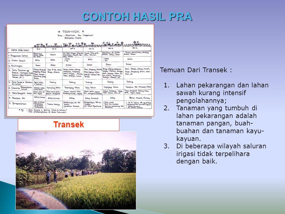 CONTOH HASIL PRA Transek Temuan Dari Transek :