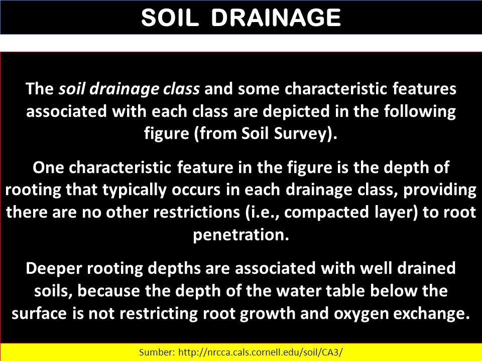 Sumber: http://nrcca.cals.cornell.edu/soil/CA3/