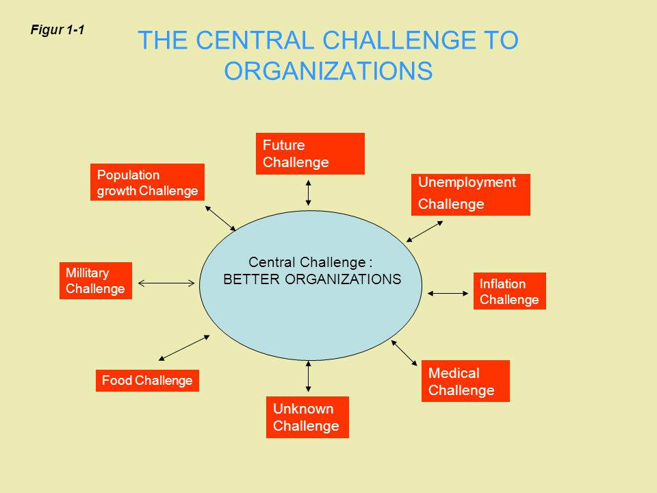 THE CENTRAL CHALLENGE TO ORGANIZATIONS