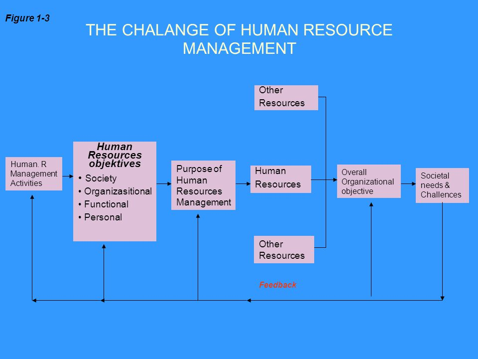 THE CHALANGE OF HUMAN RESOURCE MANAGEMENT
