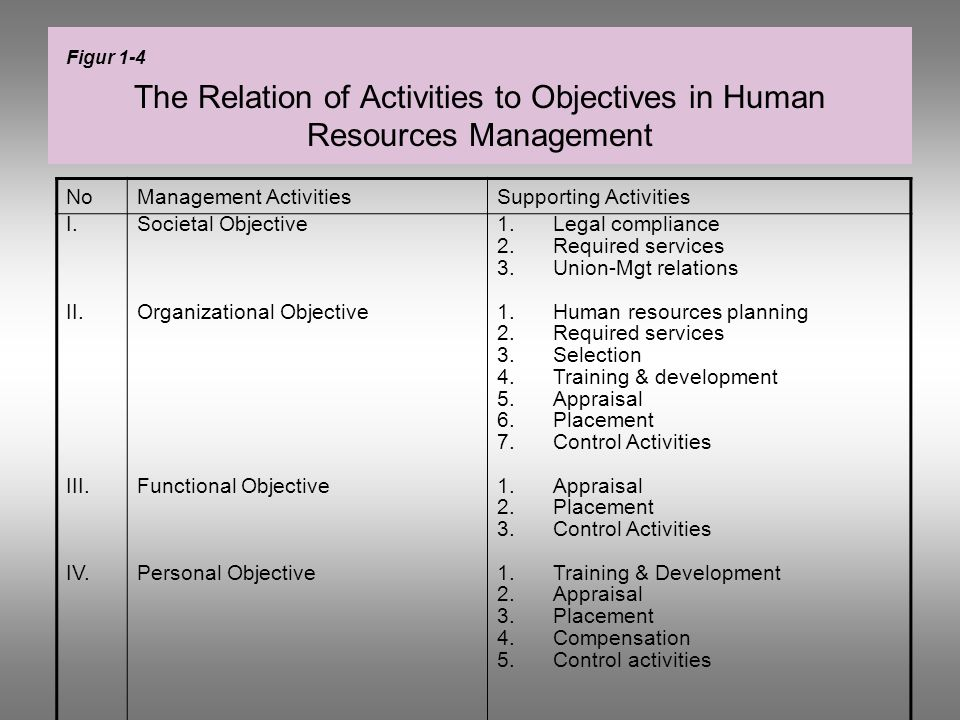 The Relation of Activities to Objectives in Human Resources Management