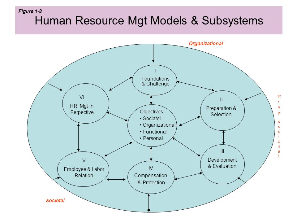 Human Resource Mgt Models & Subsystems