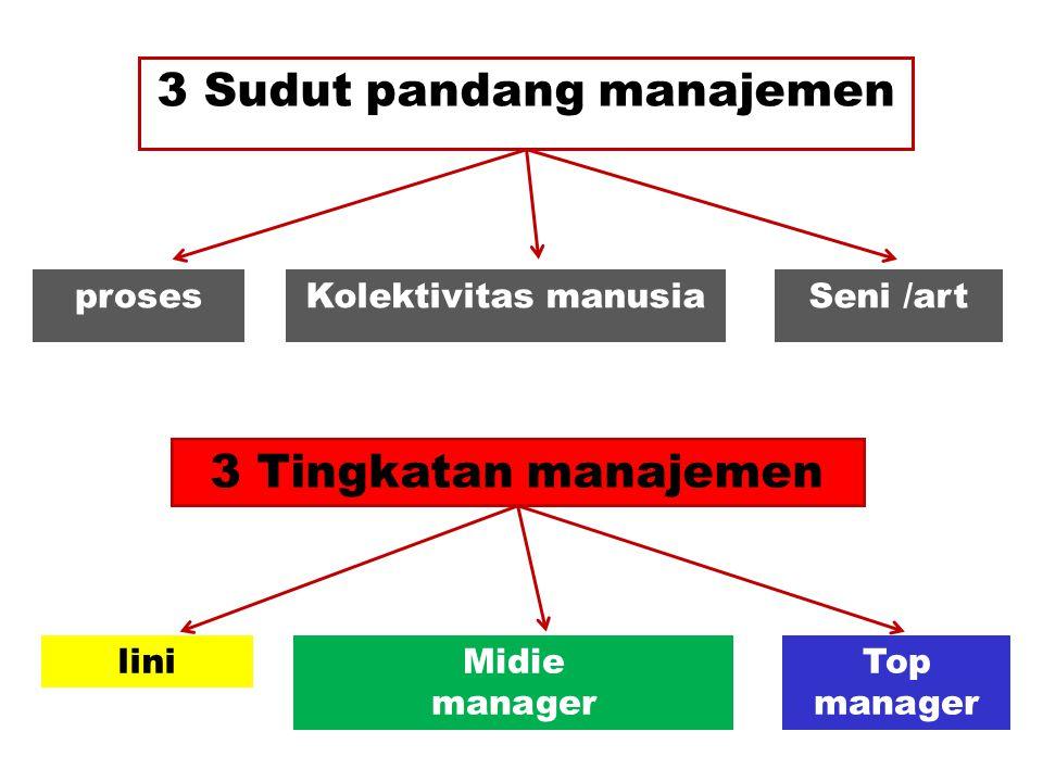 3 Sudut pandang manajemen