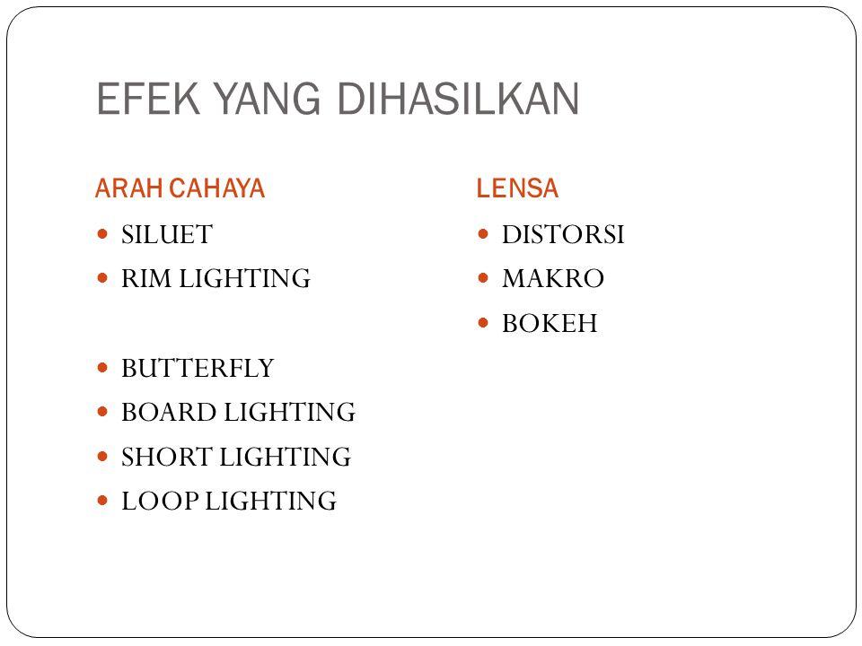 EFEK YANG DIHASILKAN SILUET RIM LIGHTING BUTTERFLY BOARD LIGHTING