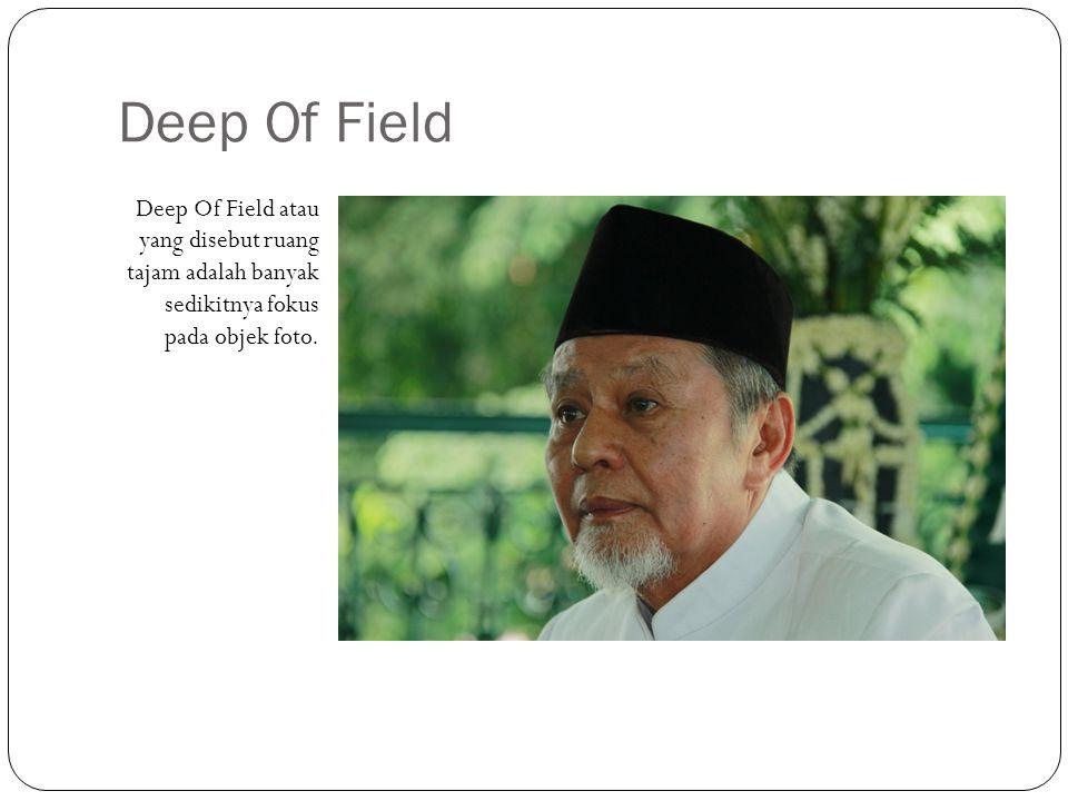 Deep Of Field Deep Of Field atau yang disebut ruang tajam adalah banyak sedikitnya fokus pada objek foto.