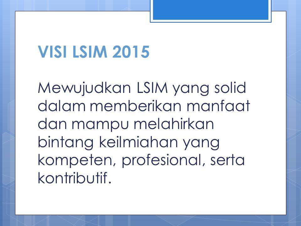 VISI LSIM 2015