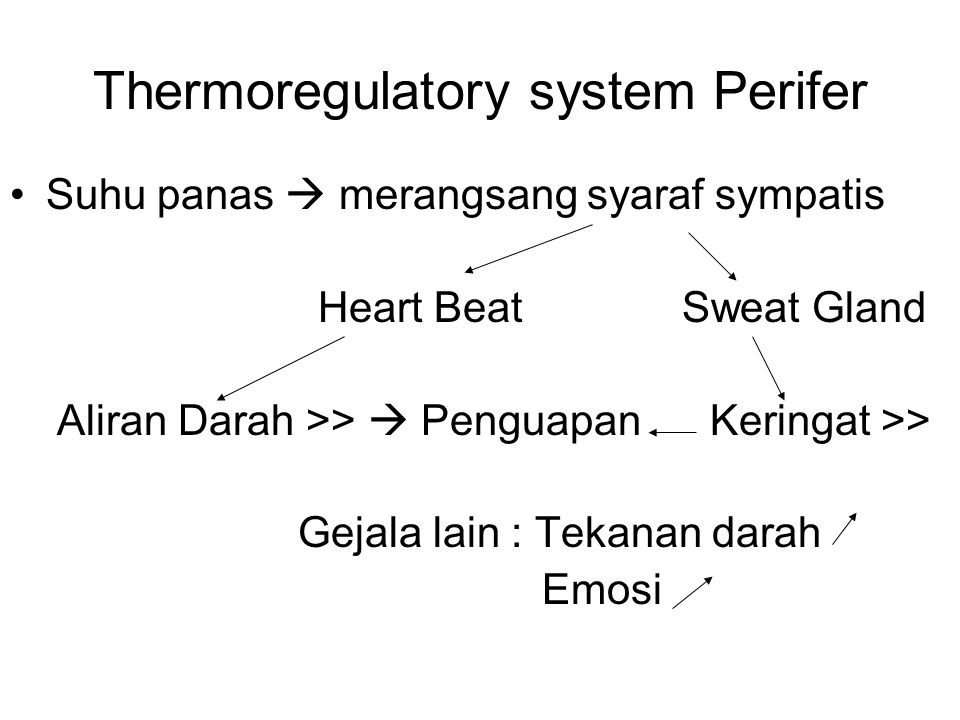 Thermoregulatory system Perifer