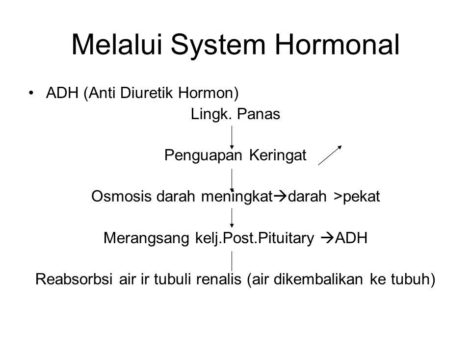 Melalui System Hormonal