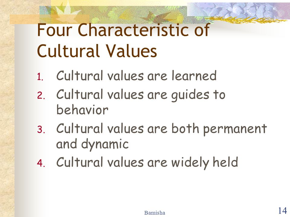 Four Characteristic of Cultural Values