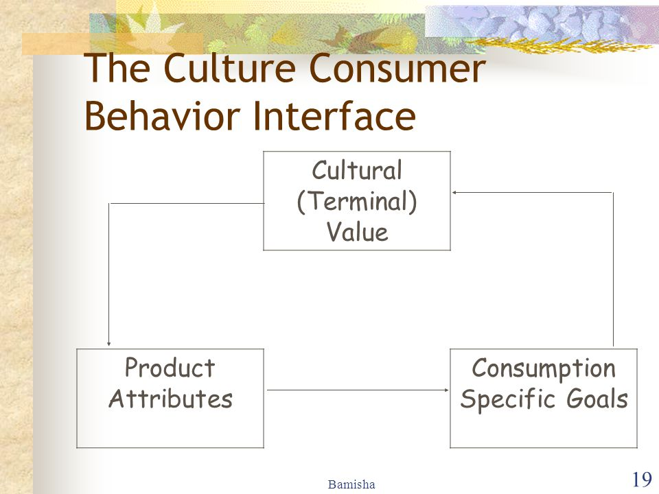 The Culture Consumer Behavior Interface