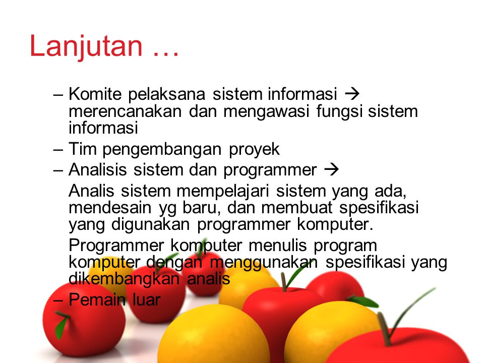 Lanjutan … Komite pelaksana sistem informasi  merencanakan dan mengawasi fungsi sistem informasi. Tim pengembangan proyek.