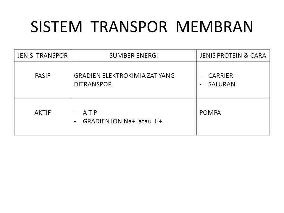 SISTEM TRANSPOR MEMBRAN