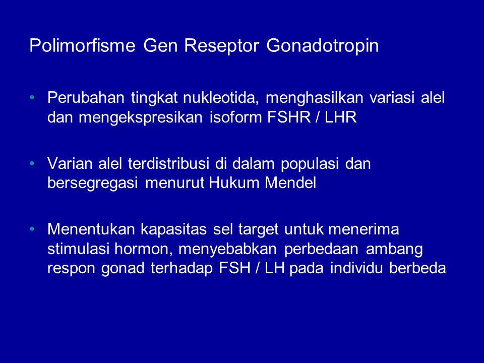 Polimorfisme Gen Reseptor Gonadotropin