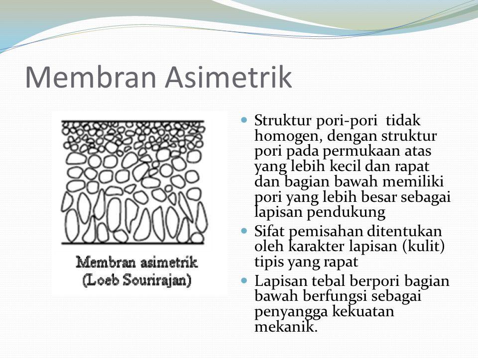 Membran Asimetrik