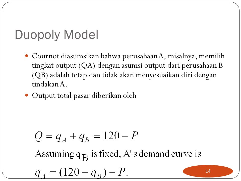 Duopoly Model