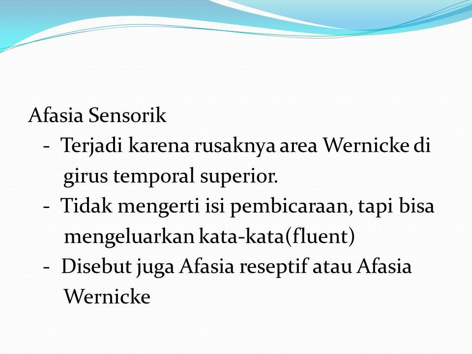 Afasia Sensorik - Terjadi karena rusaknya area Wernicke di girus temporal superior.