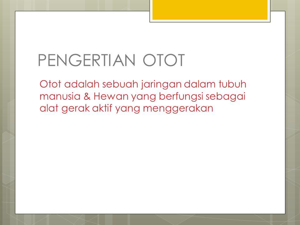PENGERTIAN OTOT Otot adalah sebuah jaringan dalam tubuh manusia & Hewan yang berfungsi sebagai alat gerak aktif yang menggerakan.