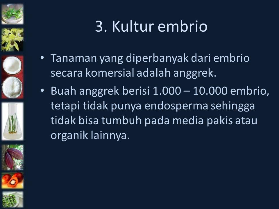 3. Kultur embrio Tanaman yang diperbanyak dari embrio secara komersial adalah anggrek.
