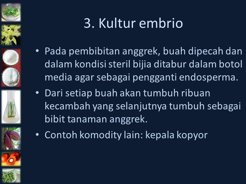 3. Kultur embrio Pada pembibitan anggrek, buah dipecah dan dalam kondisi steril bijia ditabur dalam botol media agar sebagai pengganti endosperma.