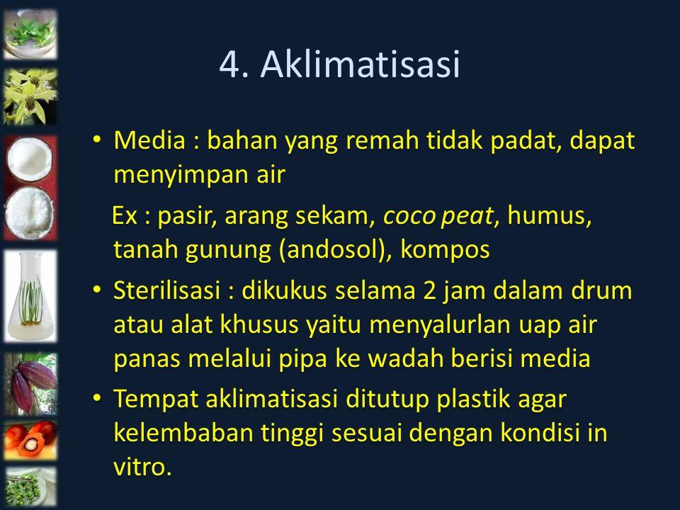 4. Aklimatisasi Media : bahan yang remah tidak padat, dapat menyimpan air. Ex : pasir, arang sekam, coco peat, humus, tanah gunung (andosol), kompos.